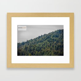 Redwood Treeline Framed Art Print