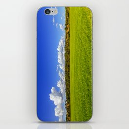 Rice Field II iPhone Skin