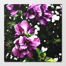 Lakehouse Flower Canvas Print