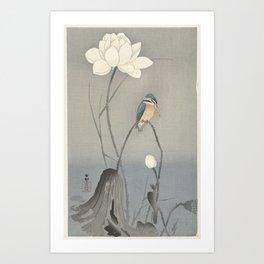 Kingfisher with Lotus Flower, Ohara Koson, 1900 - 1945 Art Print