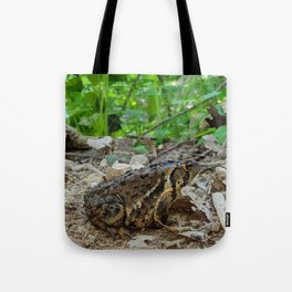 Big Toad On A Path In The Forest Tote Bag