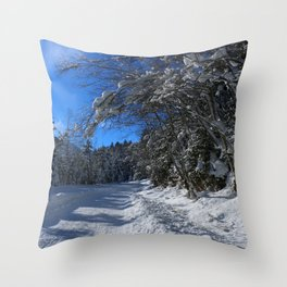 A Trail In The Snow Throw Pillow