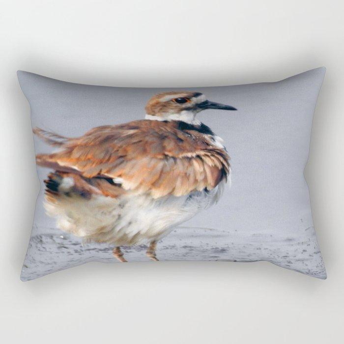 Juvenile Killdeer Rectangular Pillow