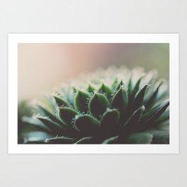 You & Eucalyptus Art Print