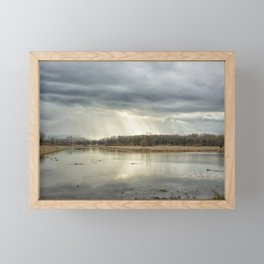 Birdland Framed Mini Art Print