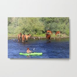 Kayaking with the Horses Metal Print