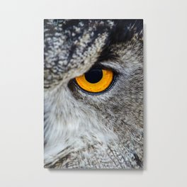 Eye of owl Metal Print
