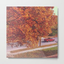 Missouri-Fall season Metal Print