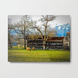 Peaceful Spring Meadow Metal Print