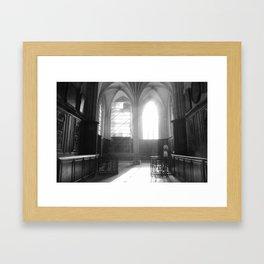 cat 004 Framed Art Print