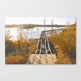Hurricane Ike & Lesser Damage Canvas Print