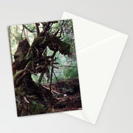 forest decomposition Stationery Cards