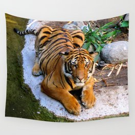 Pool Side Tiger Wall Tapestry