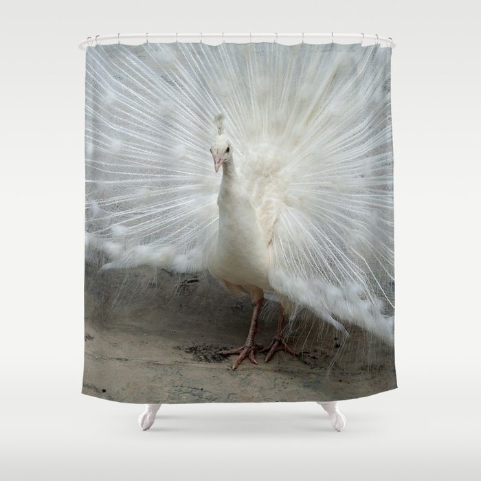 White Peacock Shower Curtain by emangl