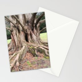 Magnificient Tree Stationery Cards