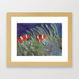 Clownfish Framed Art Print