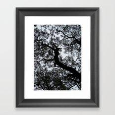 A Walk in the Clouds #3 Framed Art Print