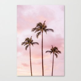 Palm Tree Photography | Landscape | Sunset Unicorn Clouds | Blush Millennial Pink Canvas Print