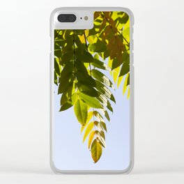 crown of a tree Clear iPhone Case