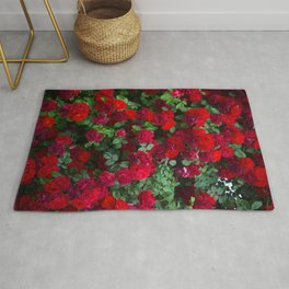 Beautiful scarlet roses in a bouquet. Close-up view. Romantic roses Rug