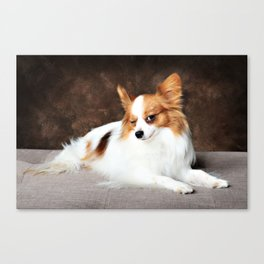 Winking Papillon Butterfly Dog Canvas Print