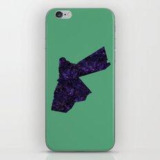 Jordan iPhone & iPod Skin
