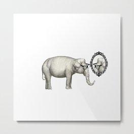 Elefante con gafas, se mira en el espejo Metal Print