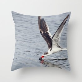 Black skimmer (Rynchops niger) feeding in Flight Throw Pillow