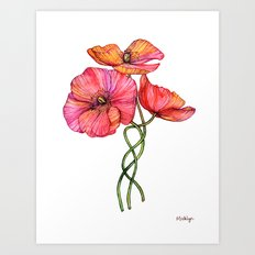 Peach & Pink Poppy Tangle Art Print