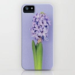 Blue hyacinth on purple iPhone Case