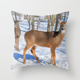Deer in the Wintery Woods by Reay of Light Photography Throw Pillow
