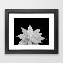 Gray Agave on Black #2 #tropical #decor #art #society6 Framed Art Print