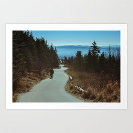 Path up the Great Smoky Mountains Art Print