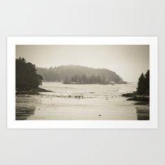 Deer Island at Low Tide Art Print