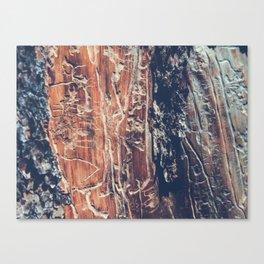 Alien Interface Canvas Print