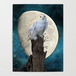White Snowy Owl Bird Moon Blue A141 Poster