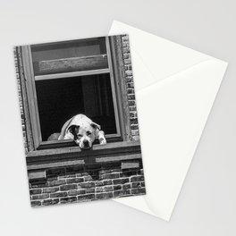 Window Watchdog Stationery Cards
