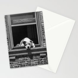 Window Watchdog Stationery Cards