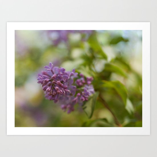 Lilac Time Art Print