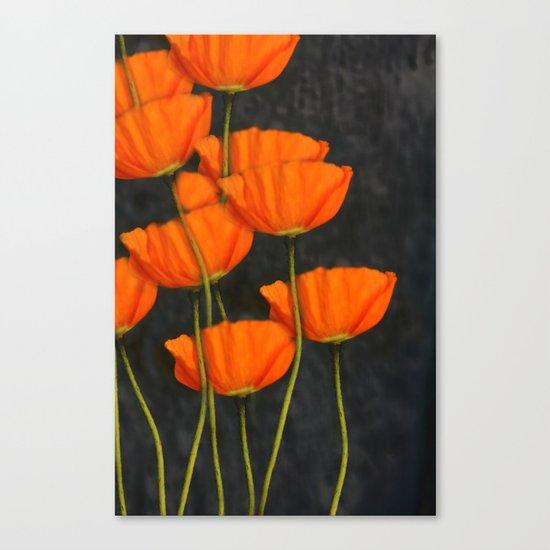 Poppies(orange). Canvas Print