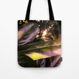 Seven Sacred Days. /// Tote Bag