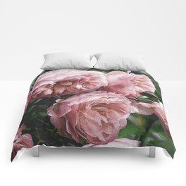 Pale pink Rose Sandi Comforters