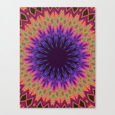 acid test5 Canvas Print