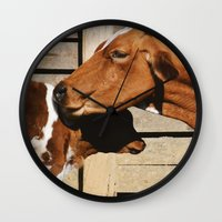cows Wall Clocks featuring Cows by Ana Francisconi