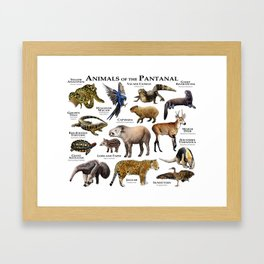 Animals of the Pantanal Framed Art Print