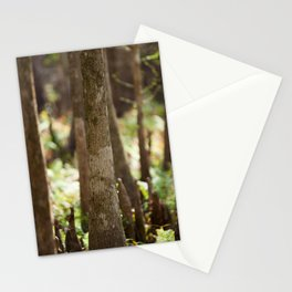 Mangrove Forest Stationery Cards