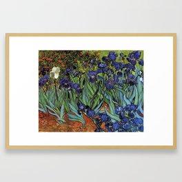 Irises -Vincent Van Gogh Framed Art Print