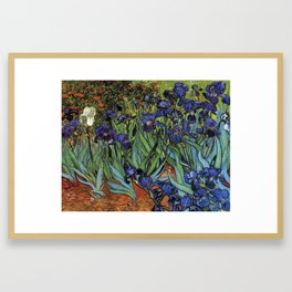 Irises -Vincent Van Gogh Framed Art Print