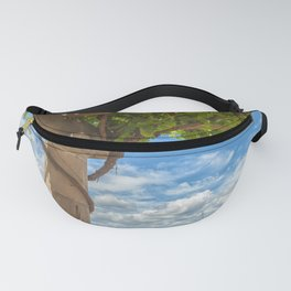 Vineyard View Fanny Pack