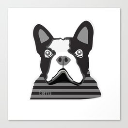 borris the french bulldog Canvas Print